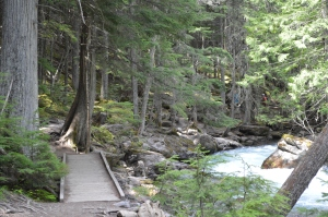 Glacier Nat Park 8